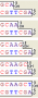 bio:polymerase_activity_53.png